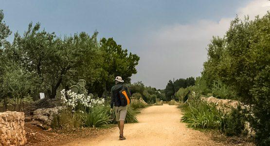 Itria Valley and Coastal Dunes Walking Tour