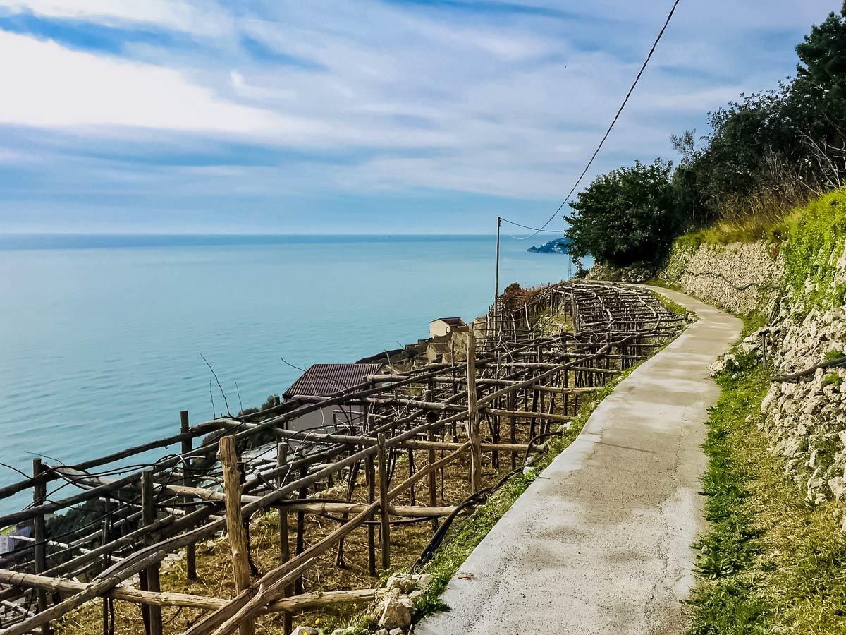 Terraced fields along sea shore walking Amalfi Coast Italy