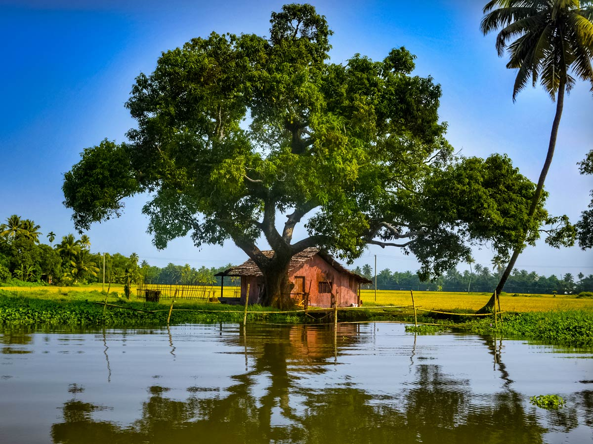 Kerala homes on the river seen from backwaters and houseboat tour India