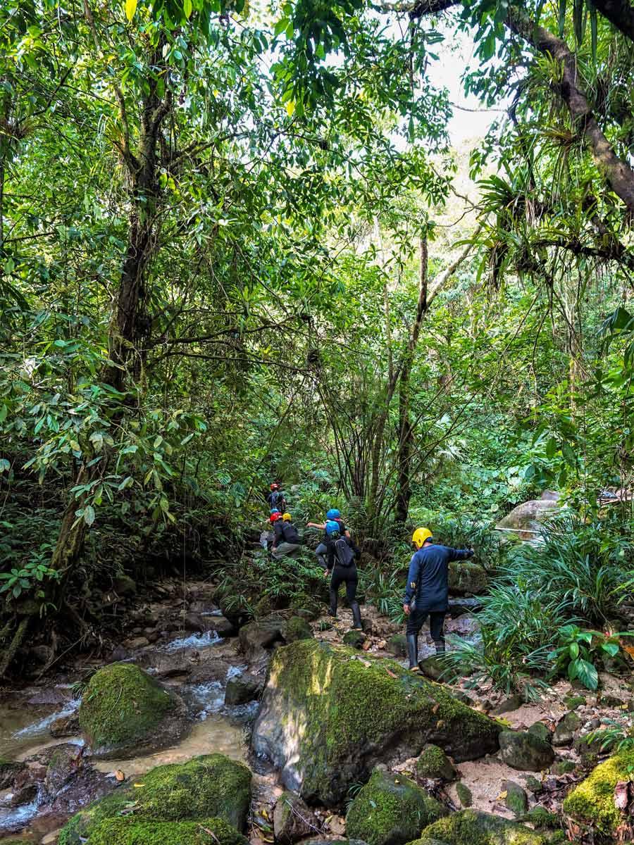 Group hiking trekking through the jungle adventure tour Peru Ecuador