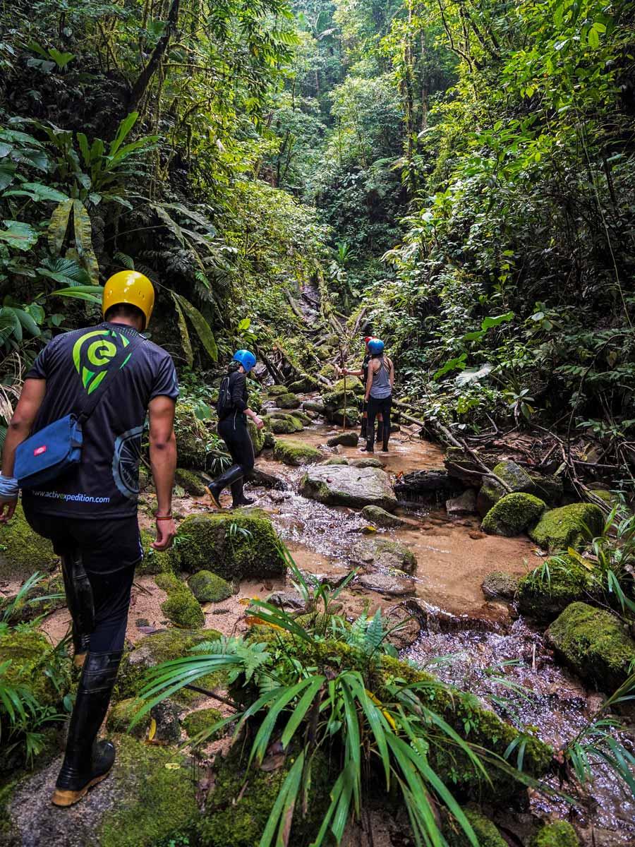 Exploring the jungle guided adventure tour Peru Ecuador