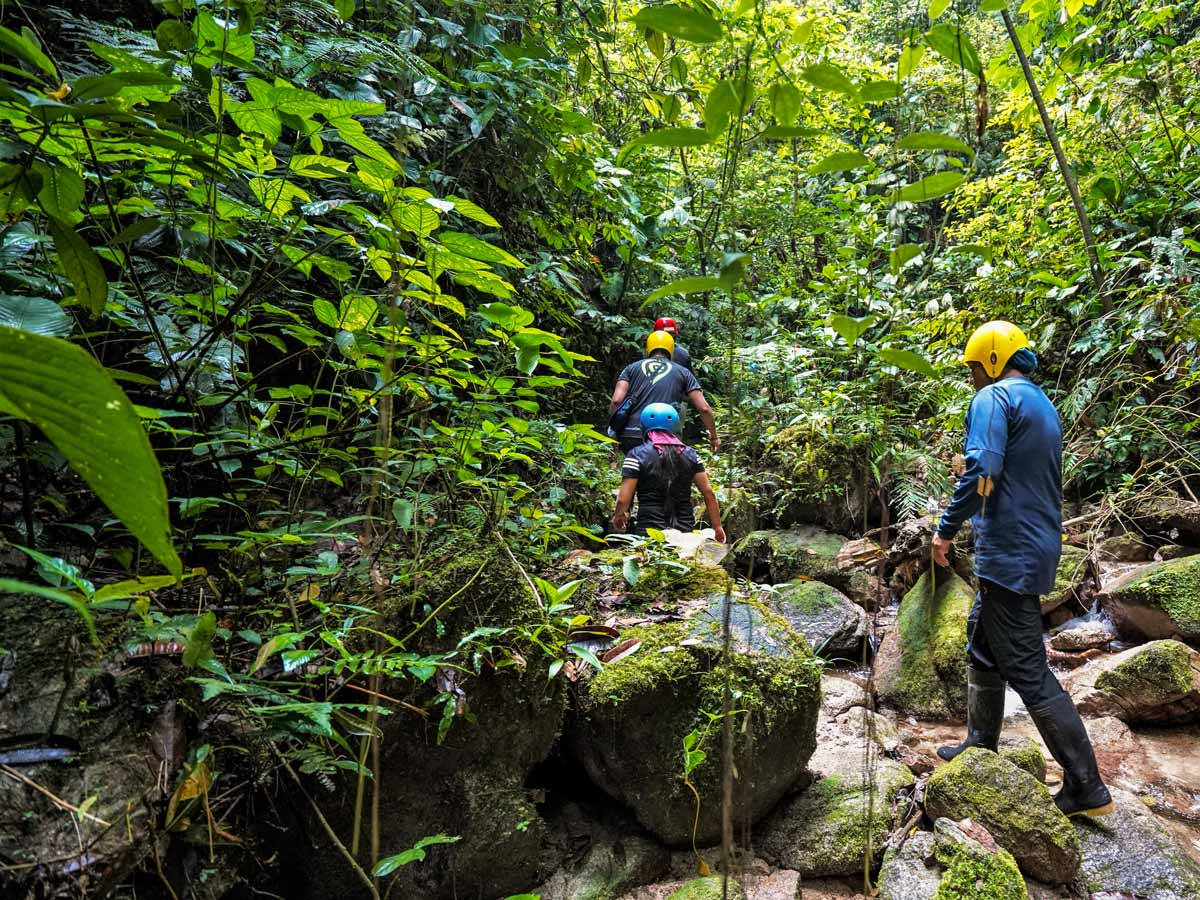 Nature walk in the jungle along adventure tour photo Peru Ecuador