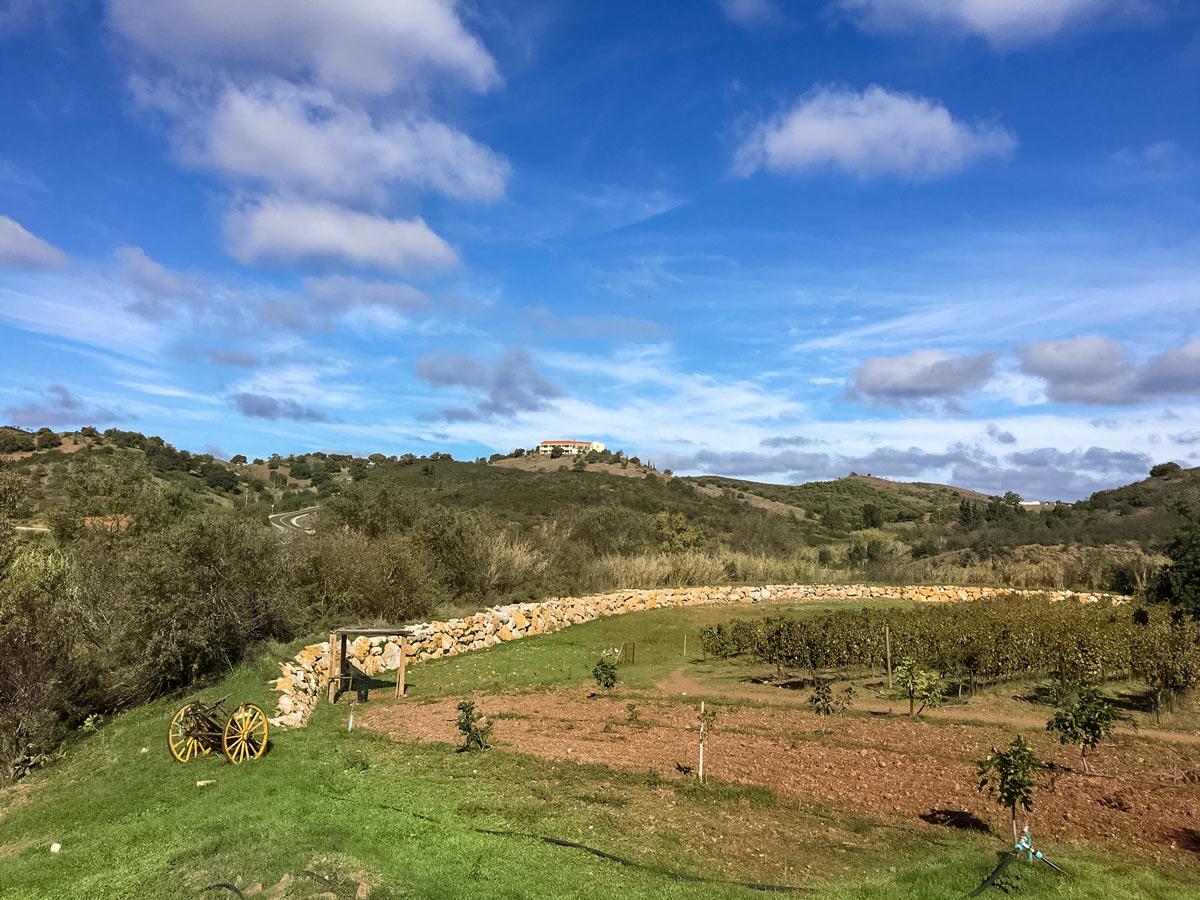 Road biking in Portugal adventure tour countryside farms