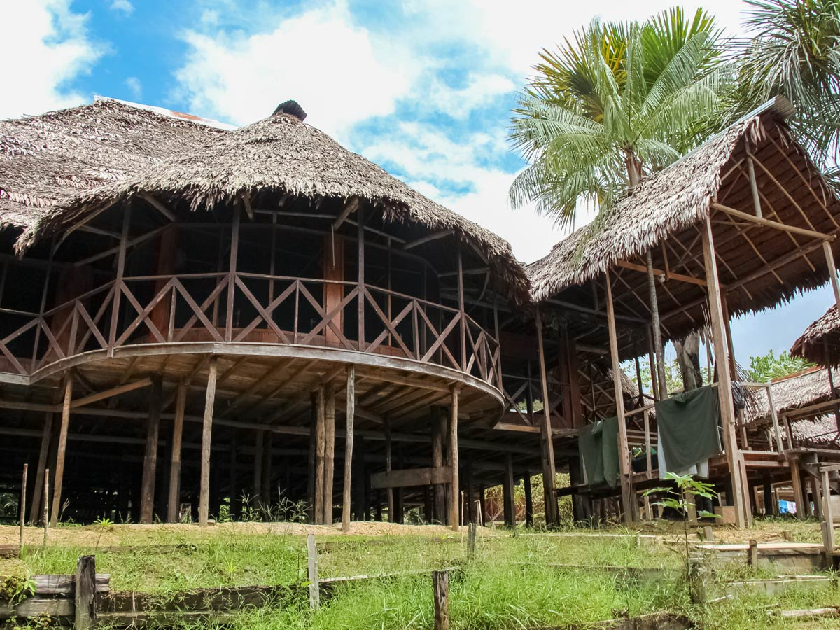 Amazon treehouse in the rainforest birding expedition Peru