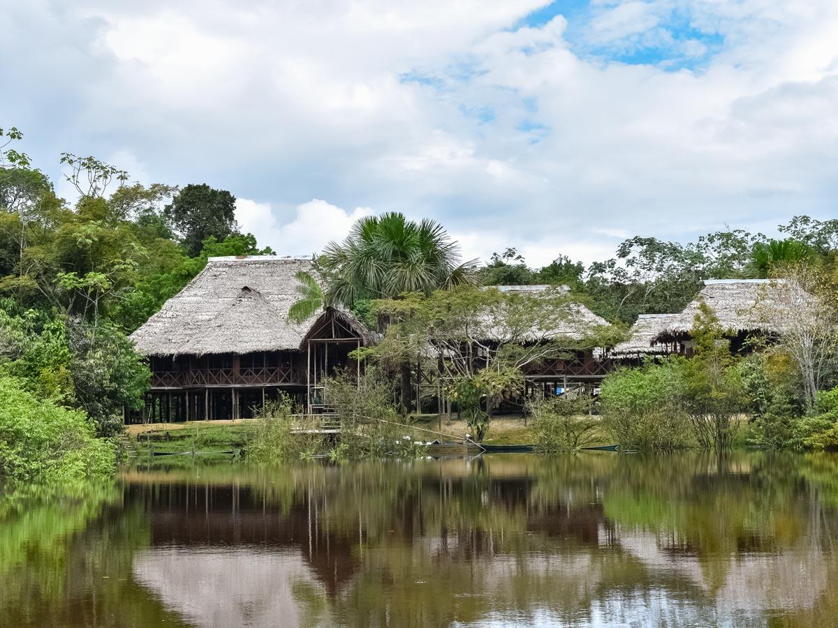 Treehouse style accomodation birding expedition Peru