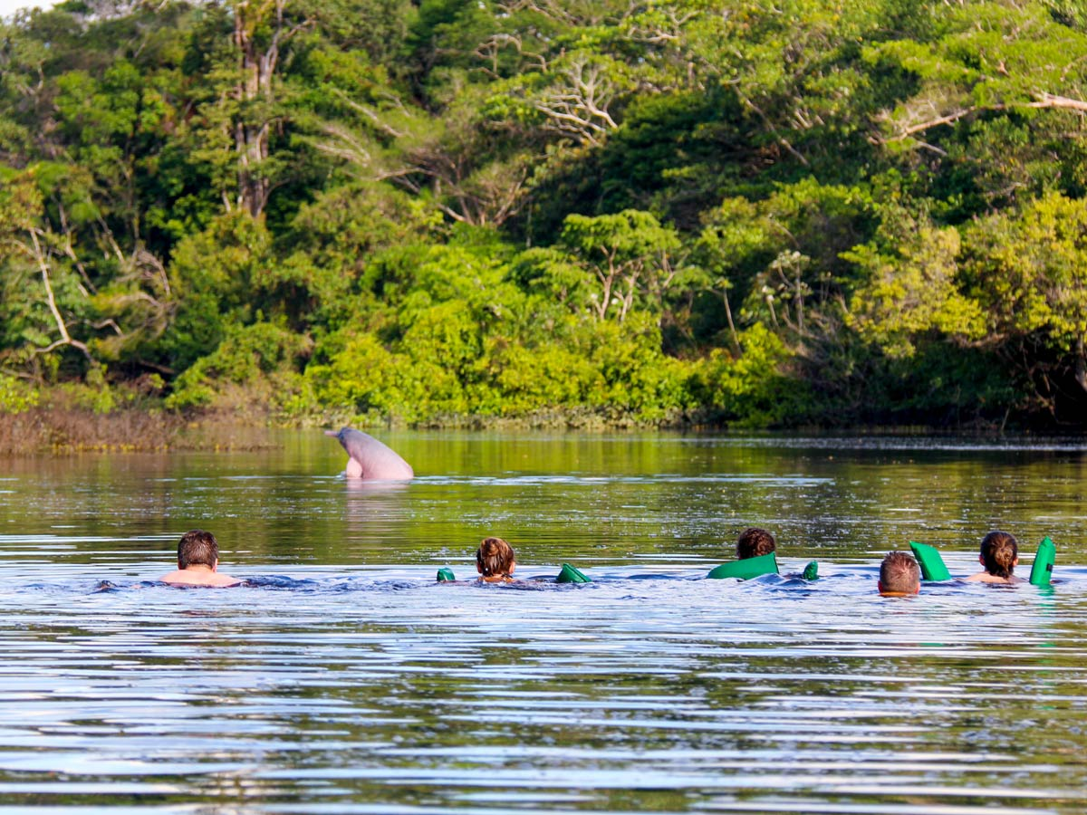 Swimming with dolphins Amazon camping expedition Peru