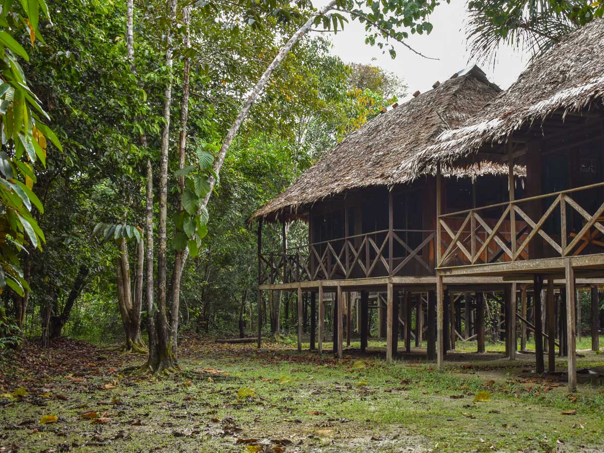 Amazon general tour rainforest cabin camping Peru