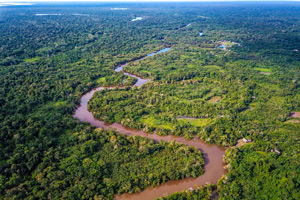 Amazon Rainforest Adventure