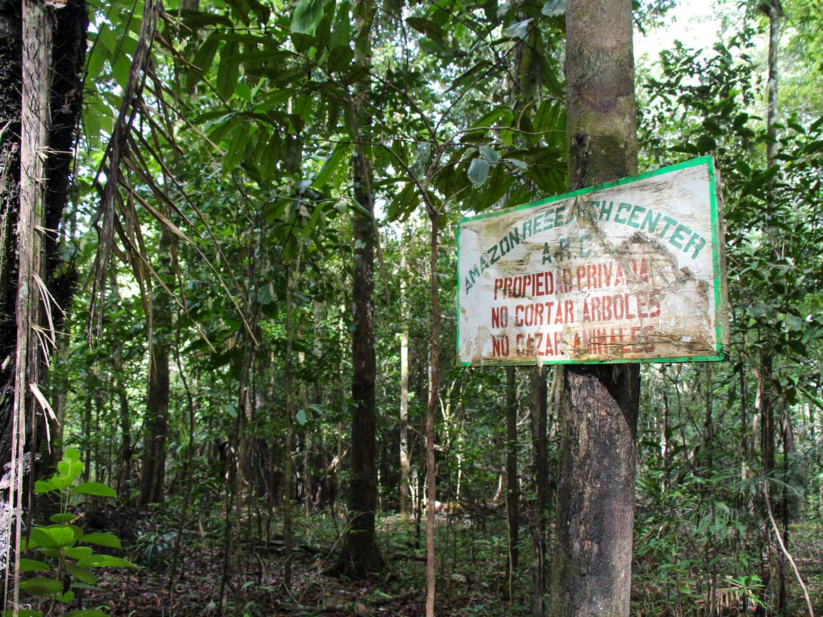 Amazon Research Center protected ecological zone research Peru
