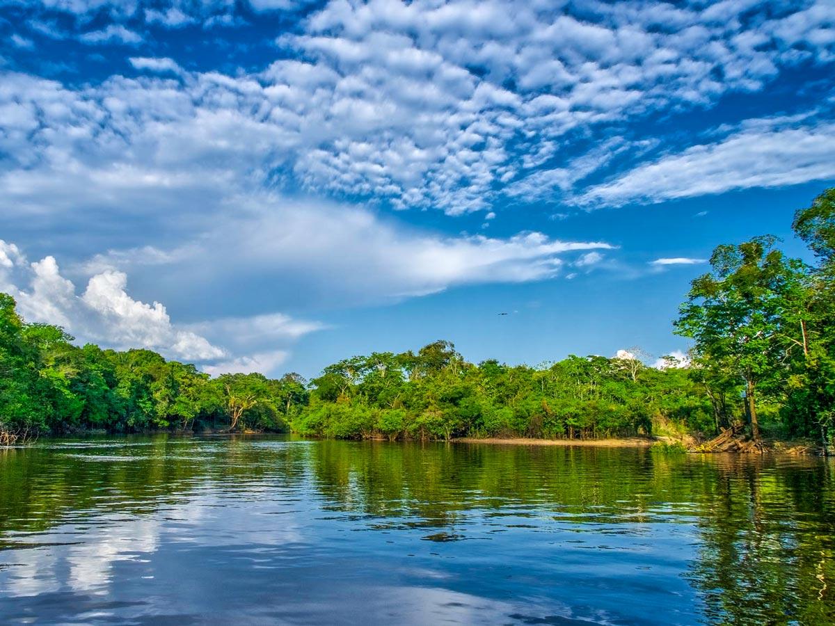 Peruvian Amazonia survival training expedition in the amazon jungle