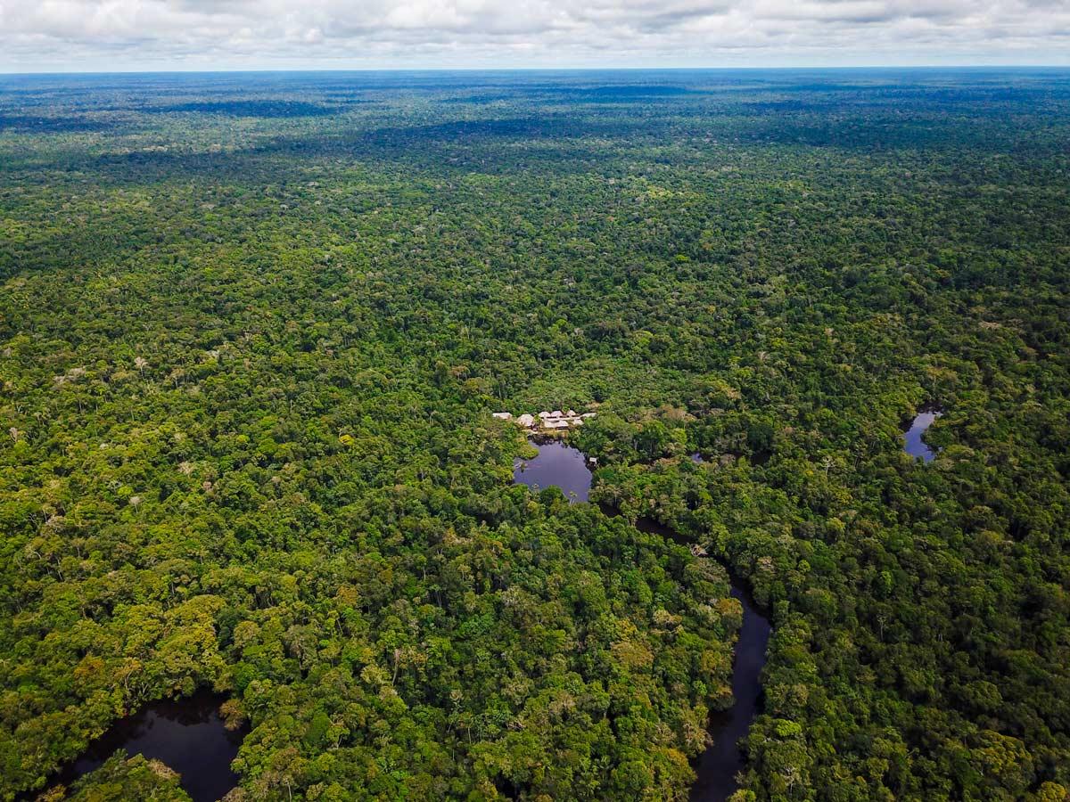 Sprawling Peruvian Amazonia rainforest jungle survival training expedition