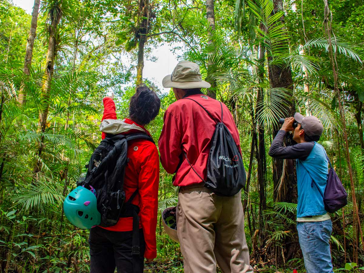 Wildlife viewing Peru Amazonia survival training expedition