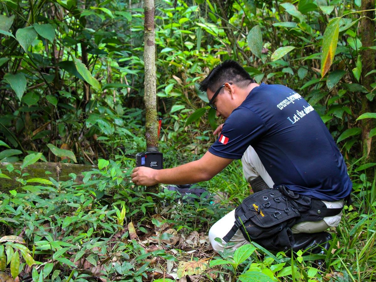 Wildlife monitoring Peru Amazonia survival training expedition
