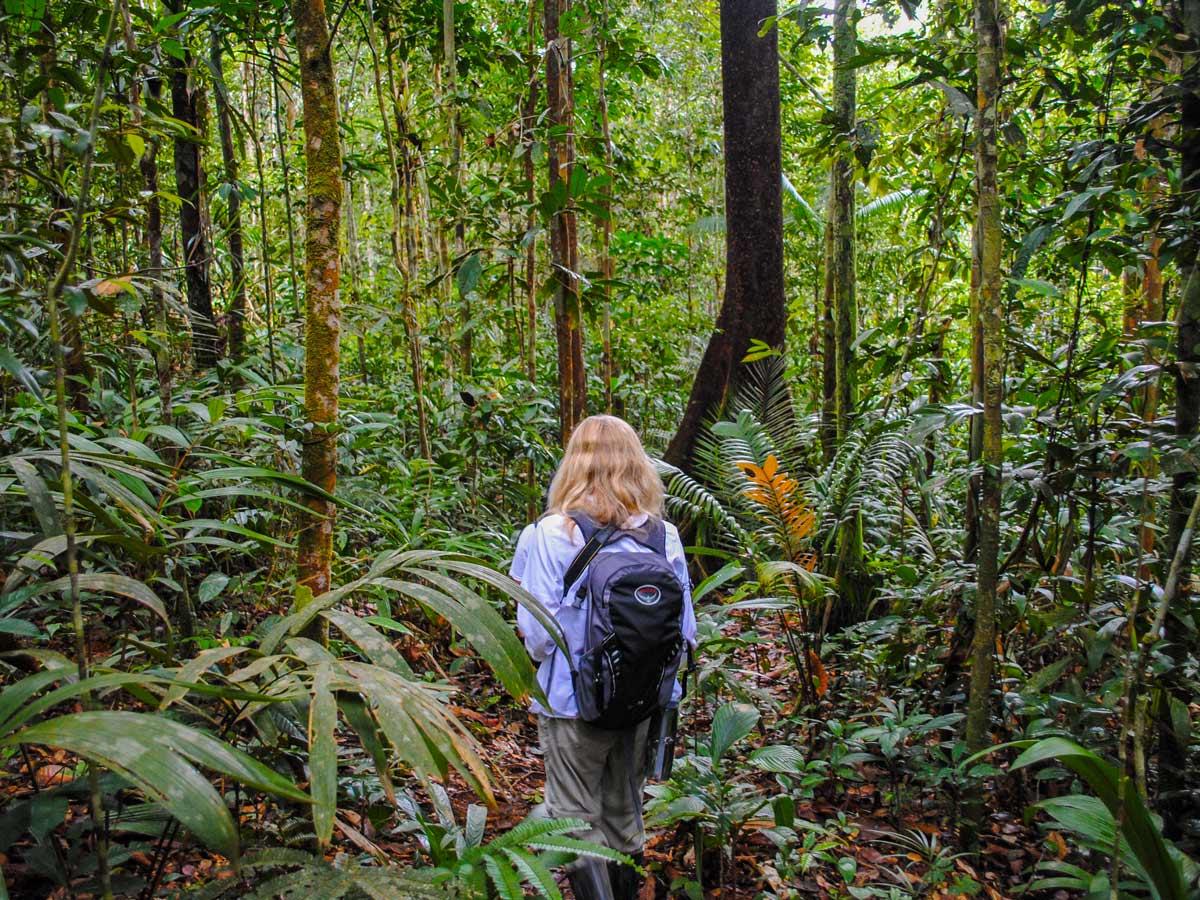 Trekking through Peru Amazonia survival training expedition