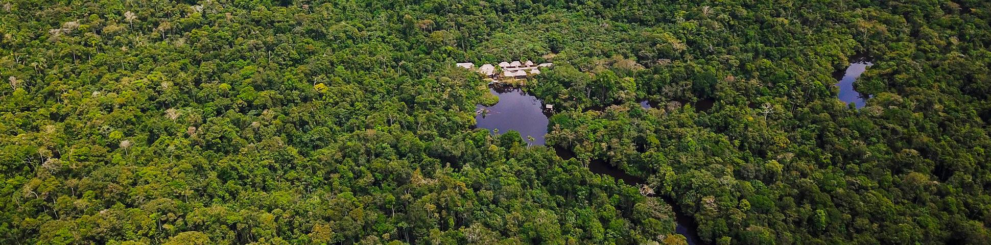Amazonia Expeditions Jungle Survival Training