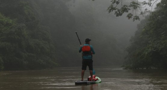 Paddling through Ecuador's Rainforest