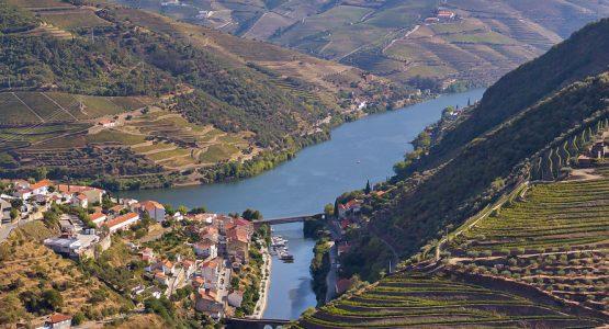 Douro Wine Region Hiking Tour