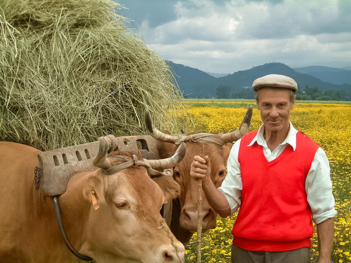 Authentic farming