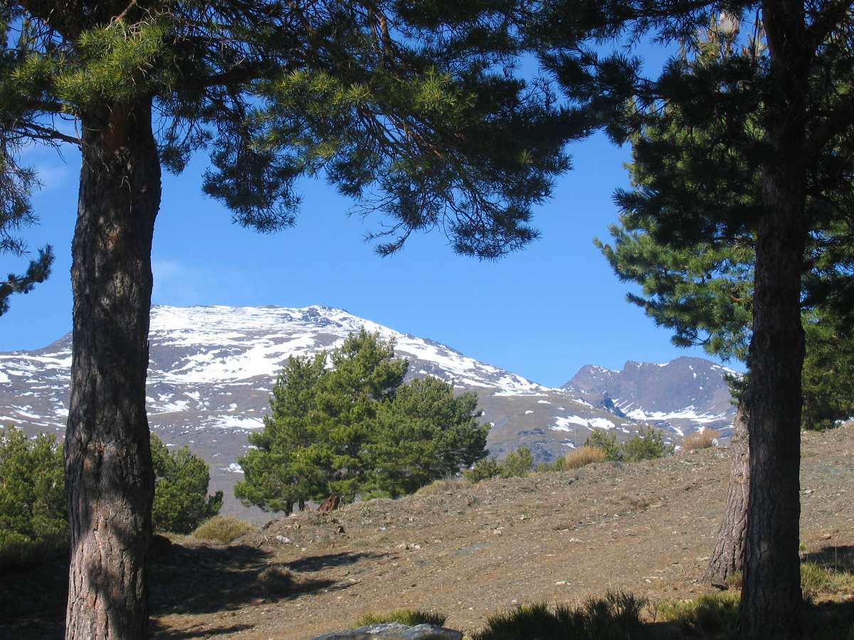 Mountain views along the Alpujarra Trek