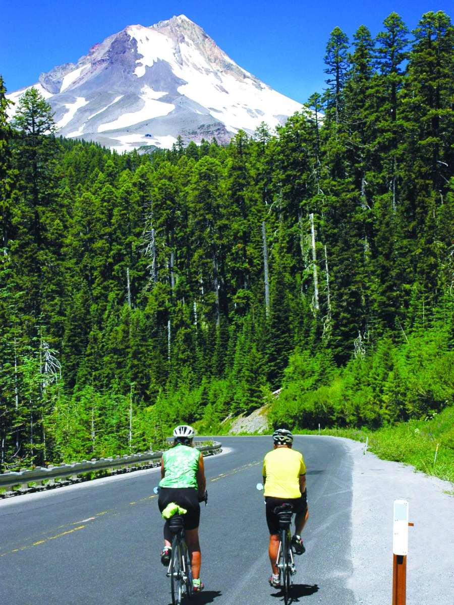 Two bikers on a road along the Pacific Coast