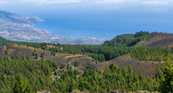 Best of La Palma Walking Tour