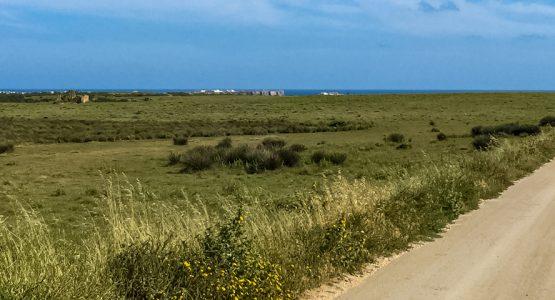 Vicentina Coast Walking Tour