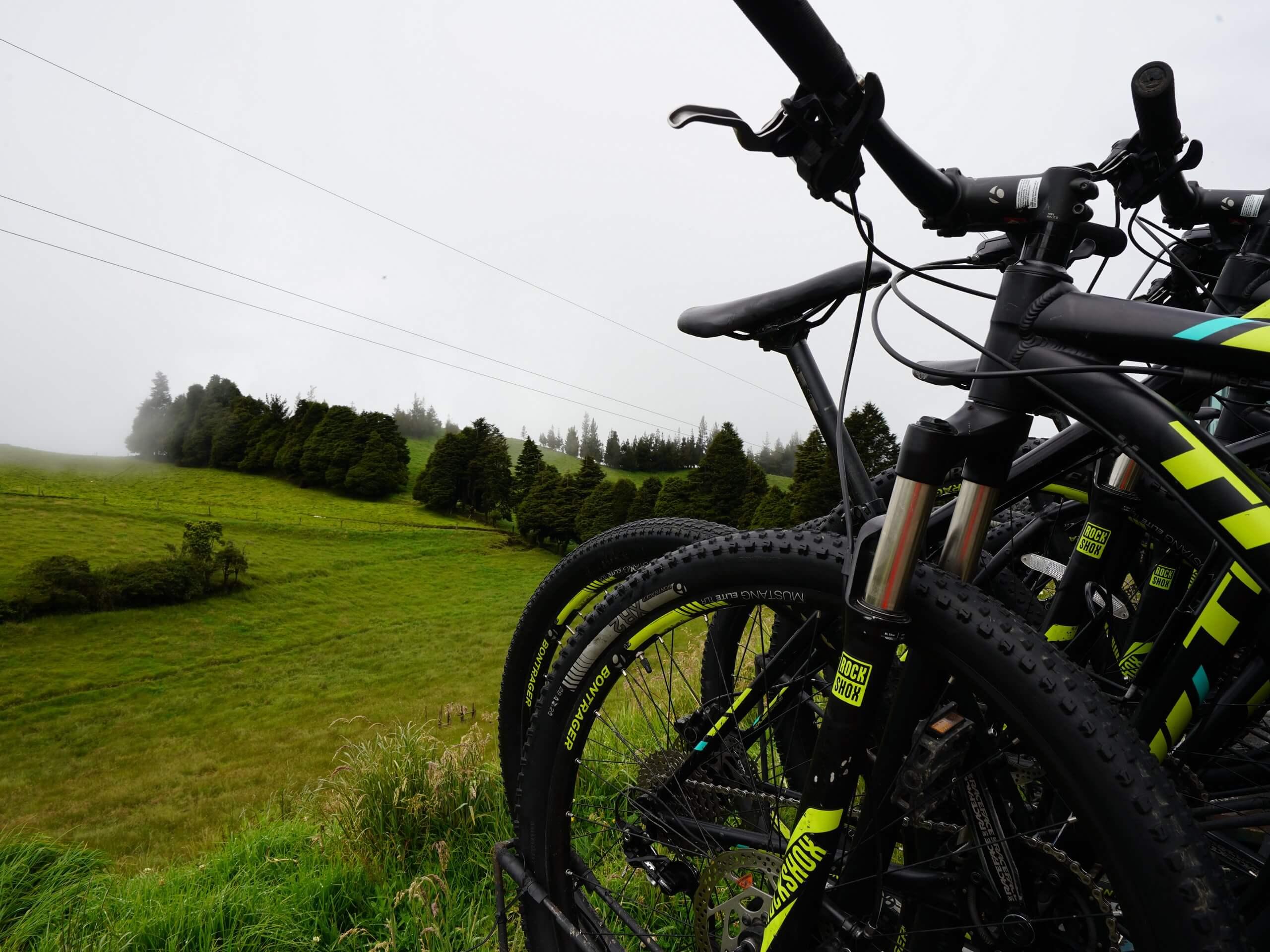 Bikes (Cycling tour through the Ecuador rainforest)