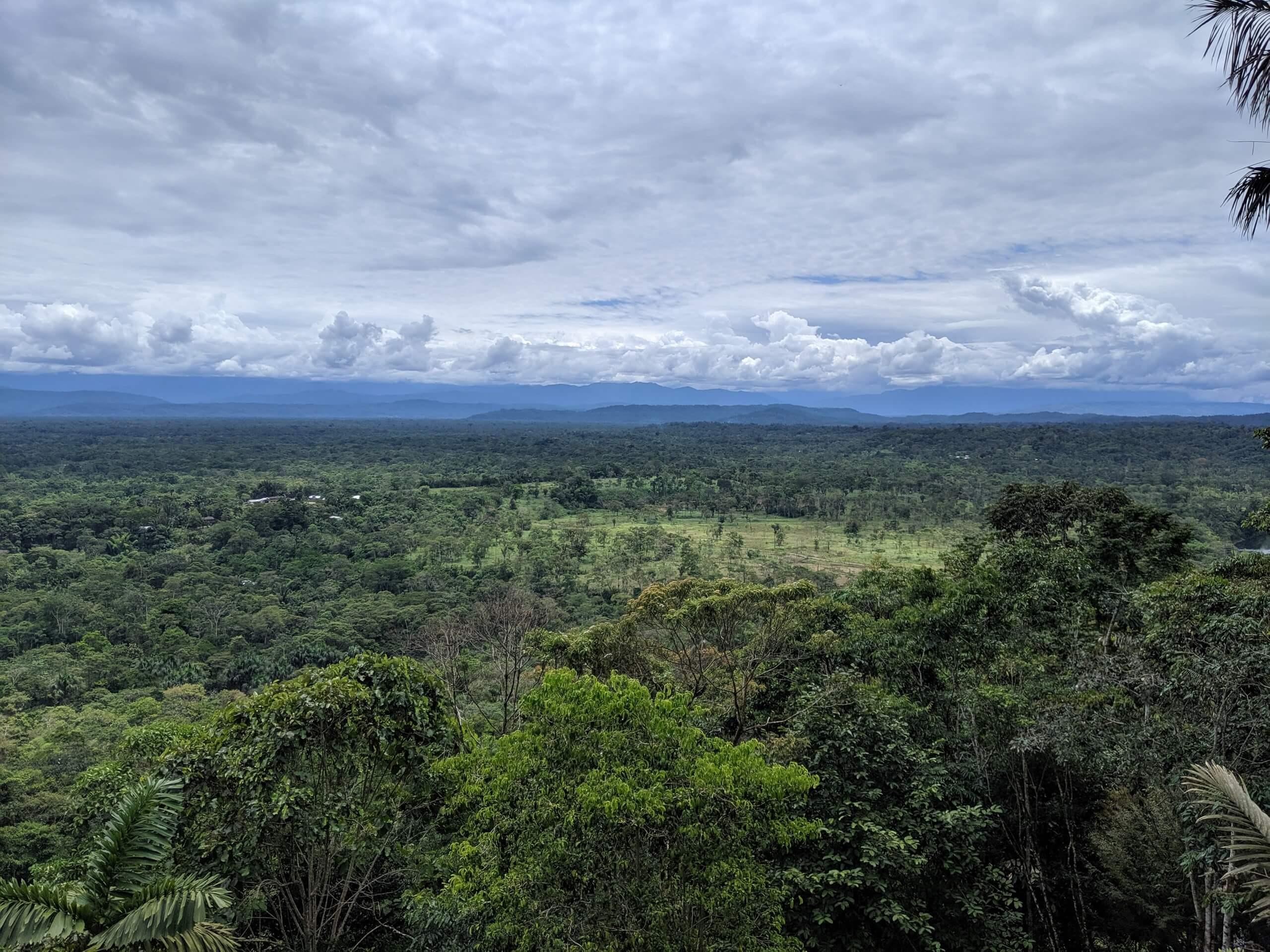 Beautiful mountain views behind the Ecuadorian Jungle