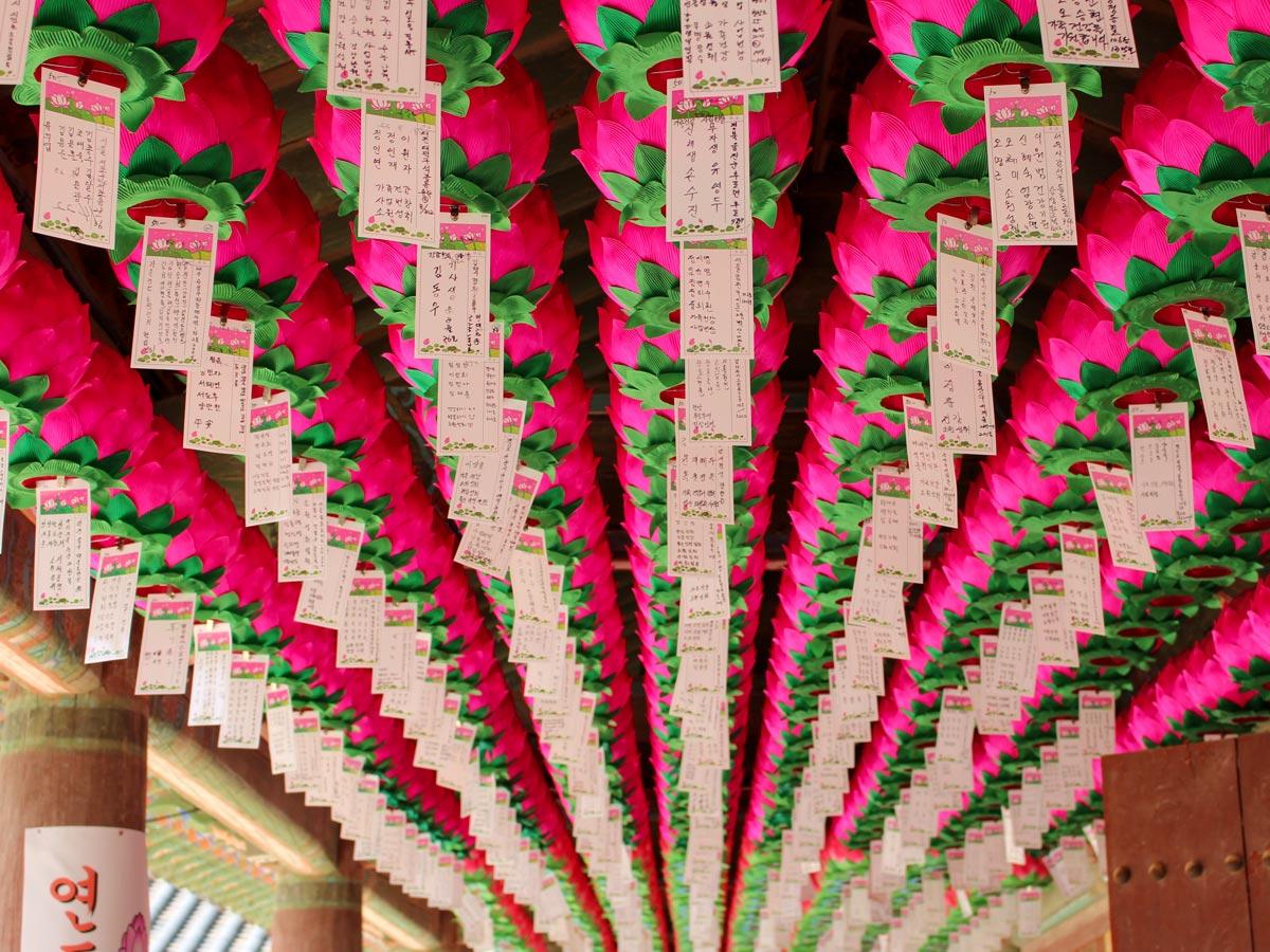Bulguksa Temple Gyeongju si South Korea paper flower lanterns adventure bike tour South Korea