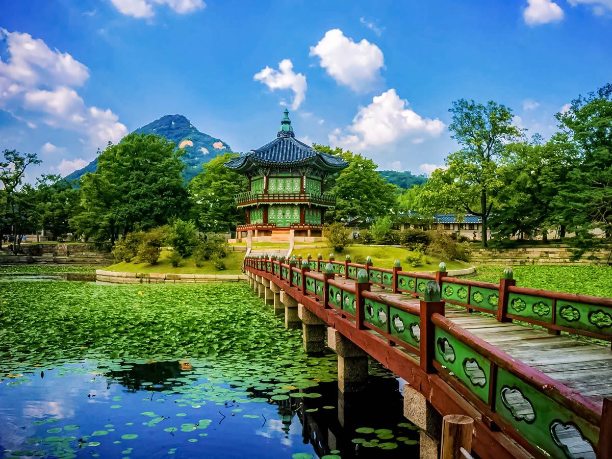 Gyeongbokgung palace lily pads pond adventure bike tour South Korea
