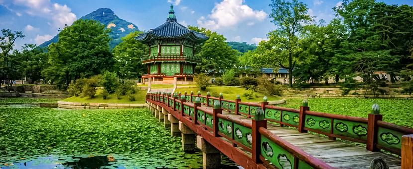 South Korea Rivers Biking Tour