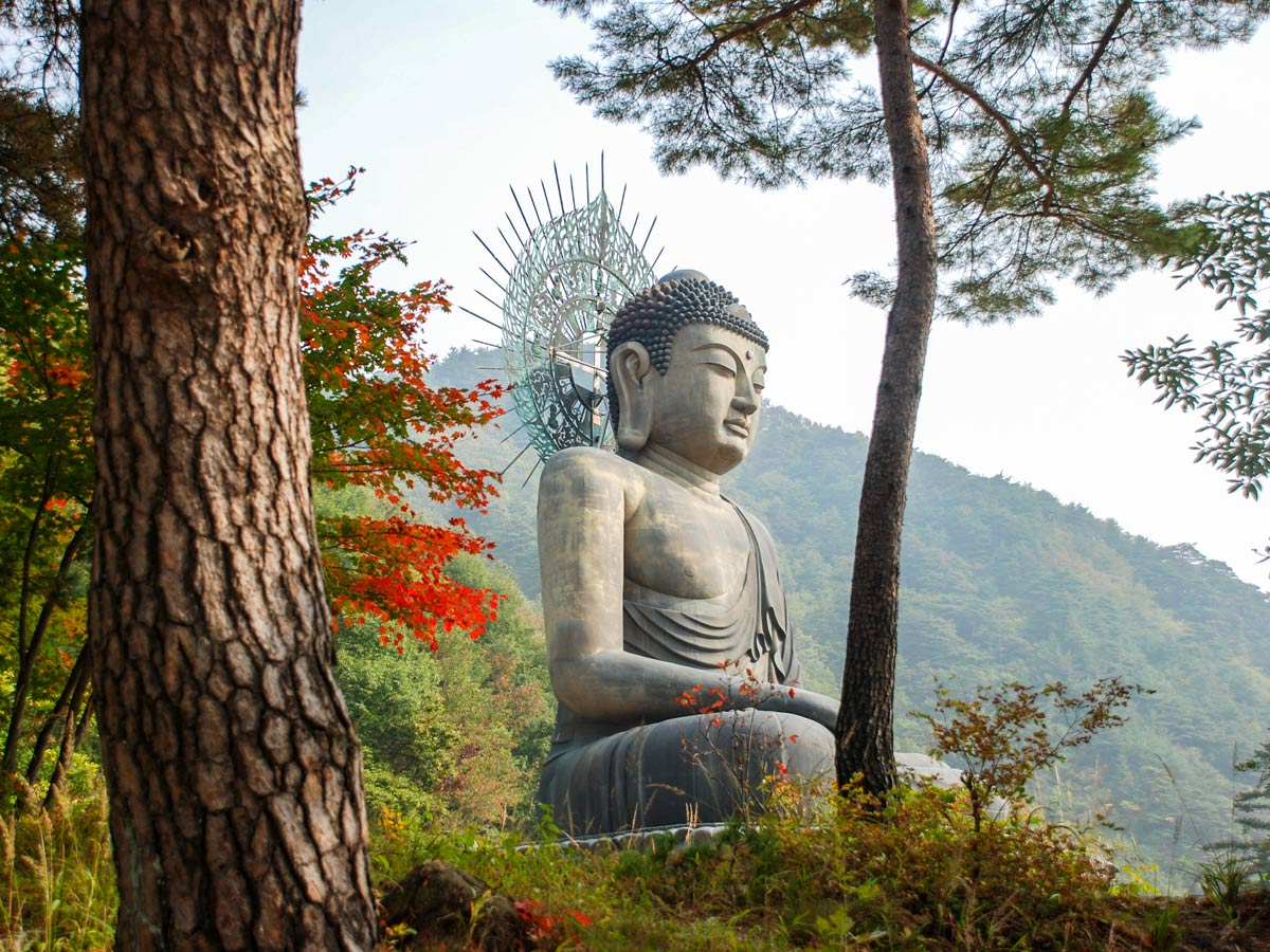 Buddha statue in the forest hiking South Korea adventure trekking tour asia
