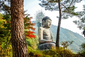 10-Day Seoul to Seoraksan Hiking Tour