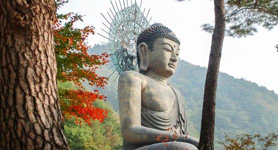 10-Day Seoul to Seoraksan Hiking Tour