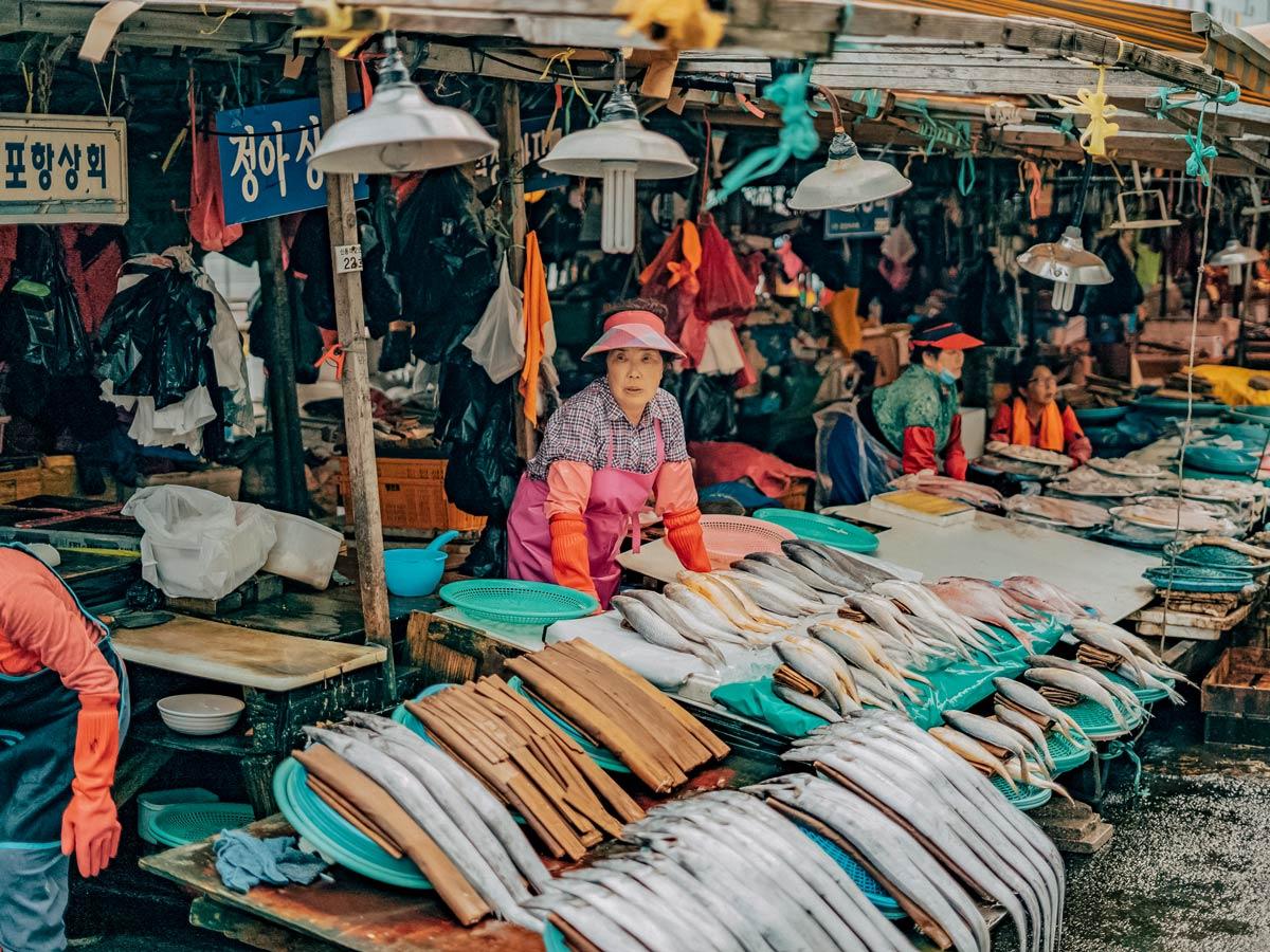 Jagalchi fish market exploring South Korea adventure tour