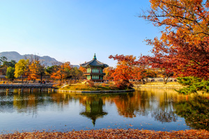 14-Day Seoul to Seoraksan Hiking Tour
