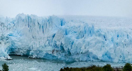 Valdez Peninsula and Patagonia