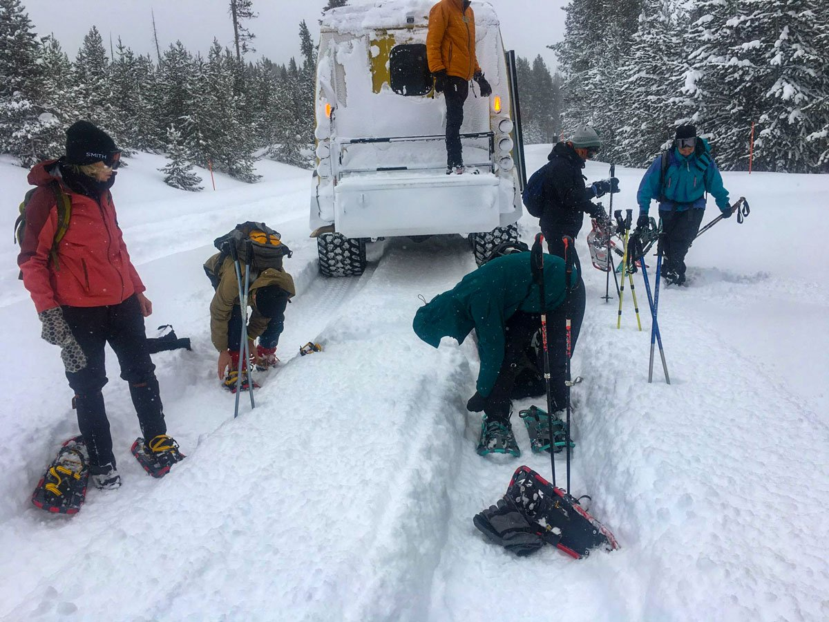 Snowshoers prepparing for trek snowshoe adventure tour Yellowstone National Park USA
