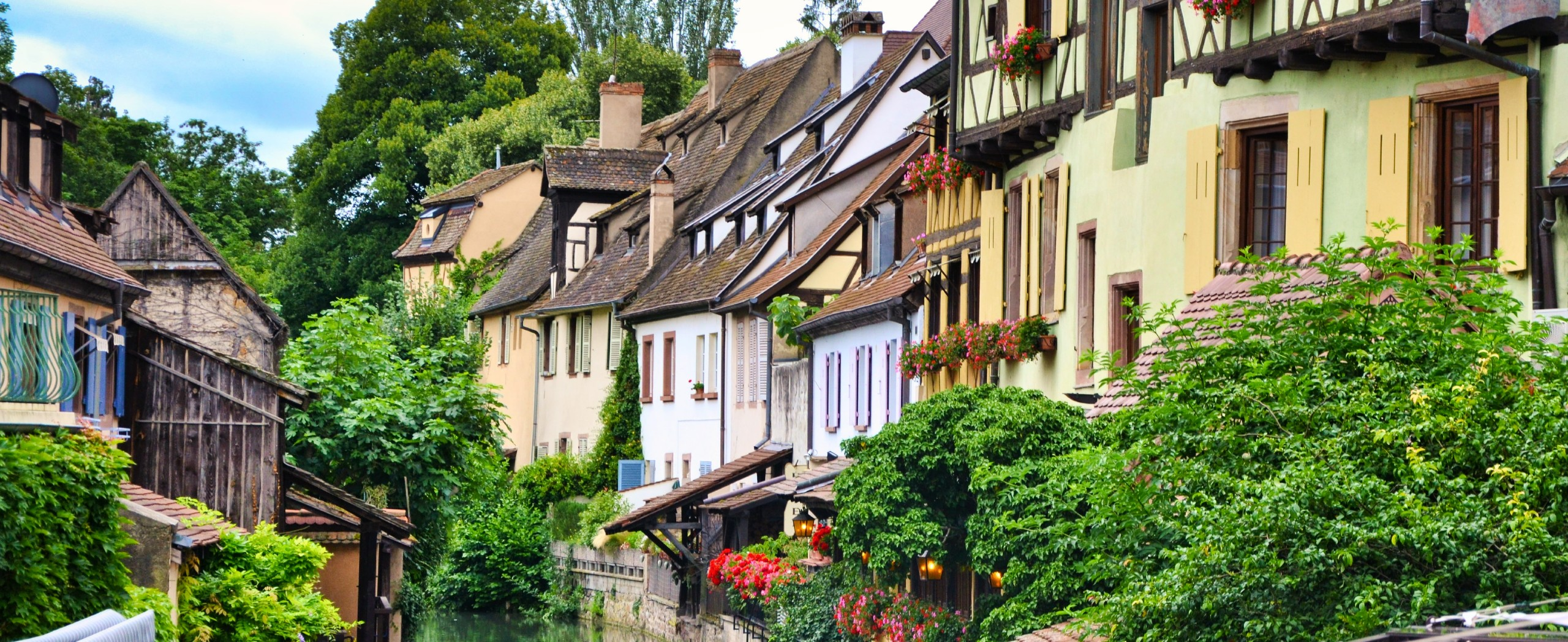 Alsace Wine Route by Bike