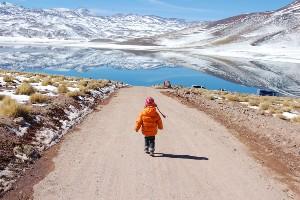 Northwest Argentina and Atacama Overland