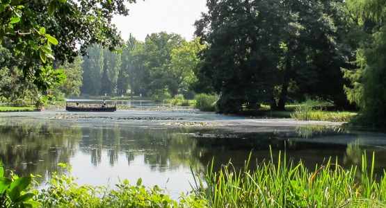 Hamburg to Dresden on the Elbe Cycle Path