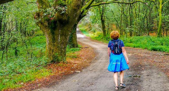 Camino Sanabrés to Santiago de Compostela