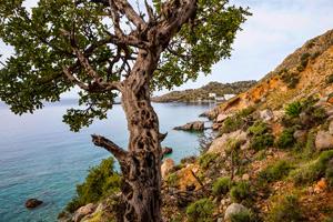 Crete Coast to Coast Tour
