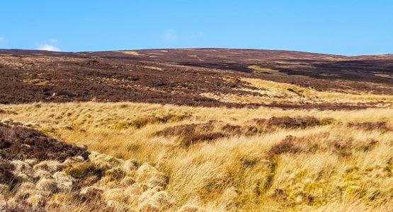 South Ireland Drive & Hike Adventure
