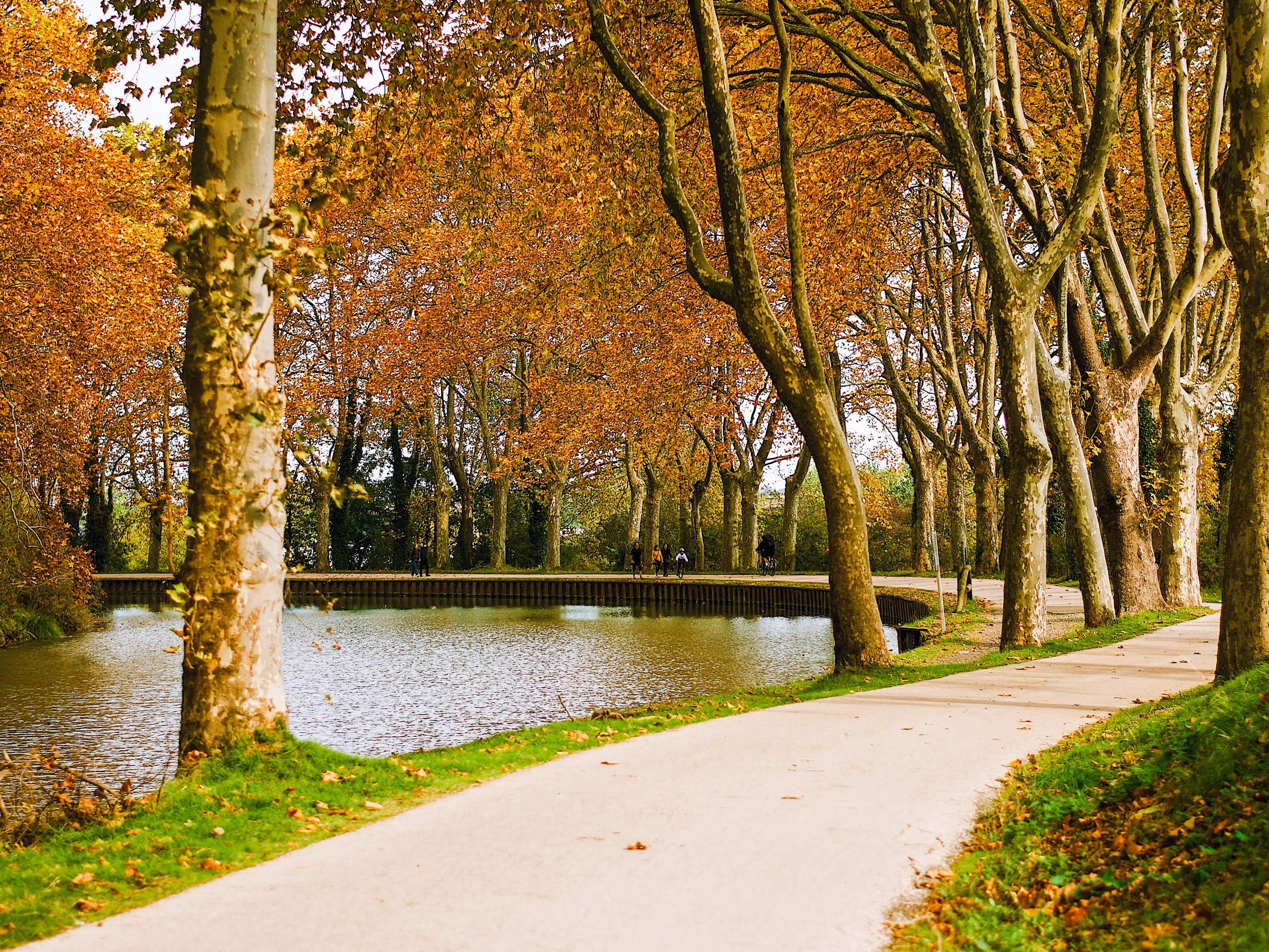 France Canal du Midi autumn park