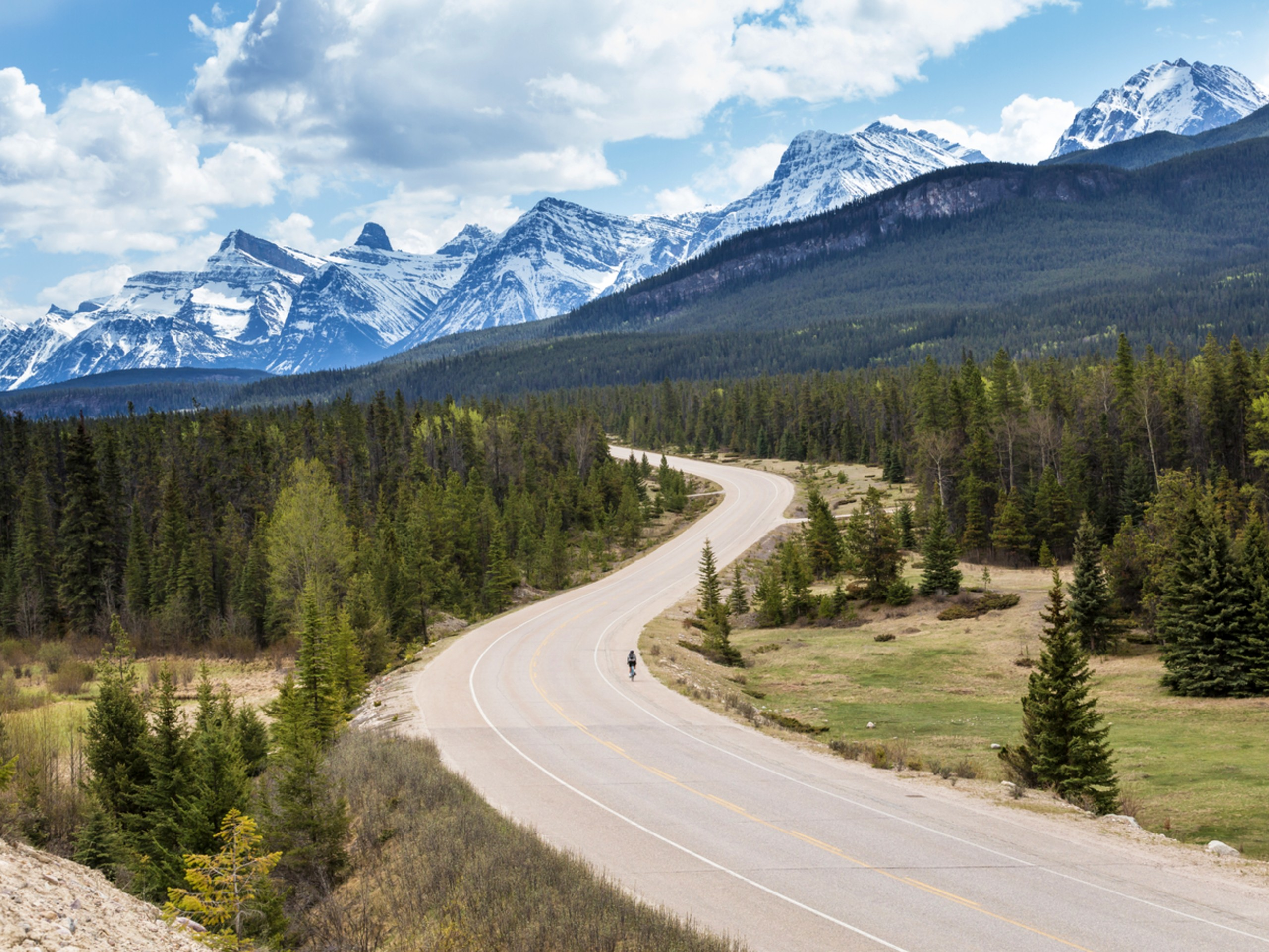 Lone biker in front of the beautiful mountains of the Icefields Parkway