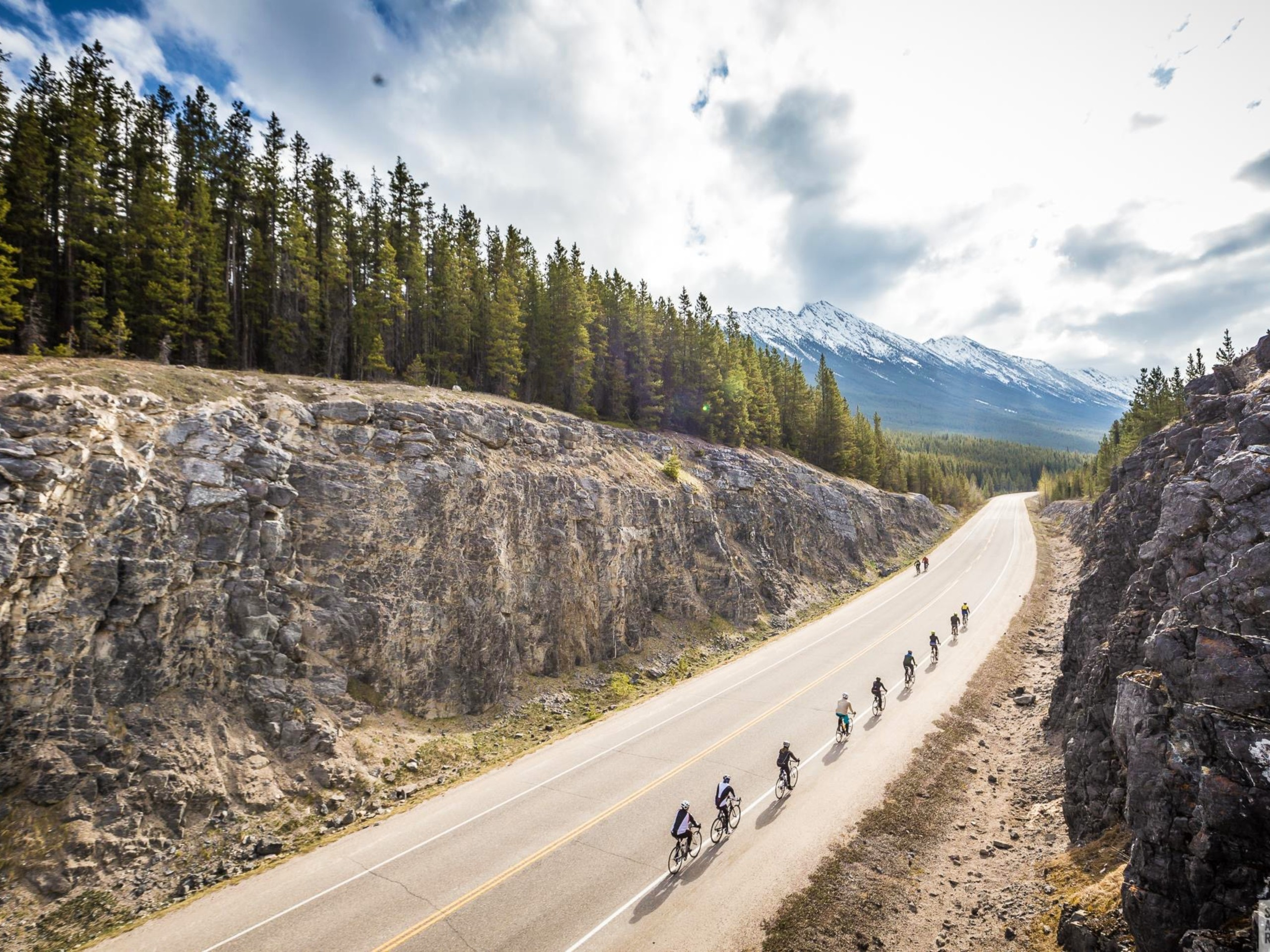 Many cyclists riding on the Icefields Parkway (Alberta)