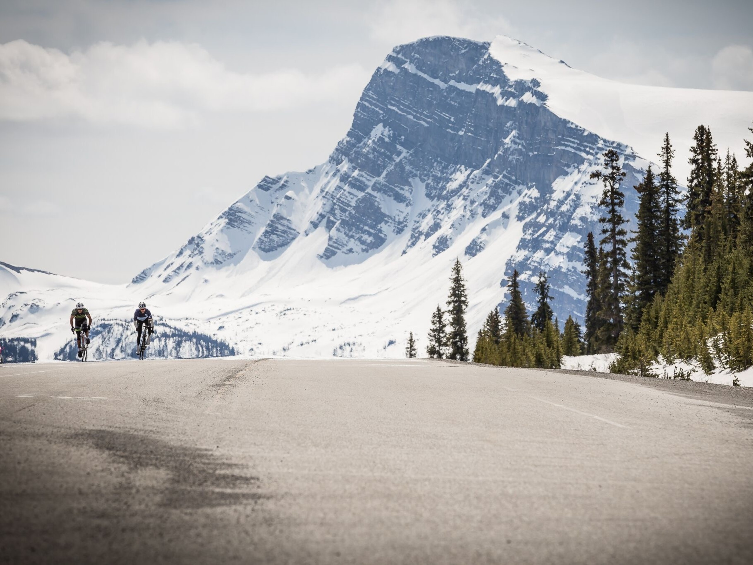 Snowy peaks along the Icefields Parkway
