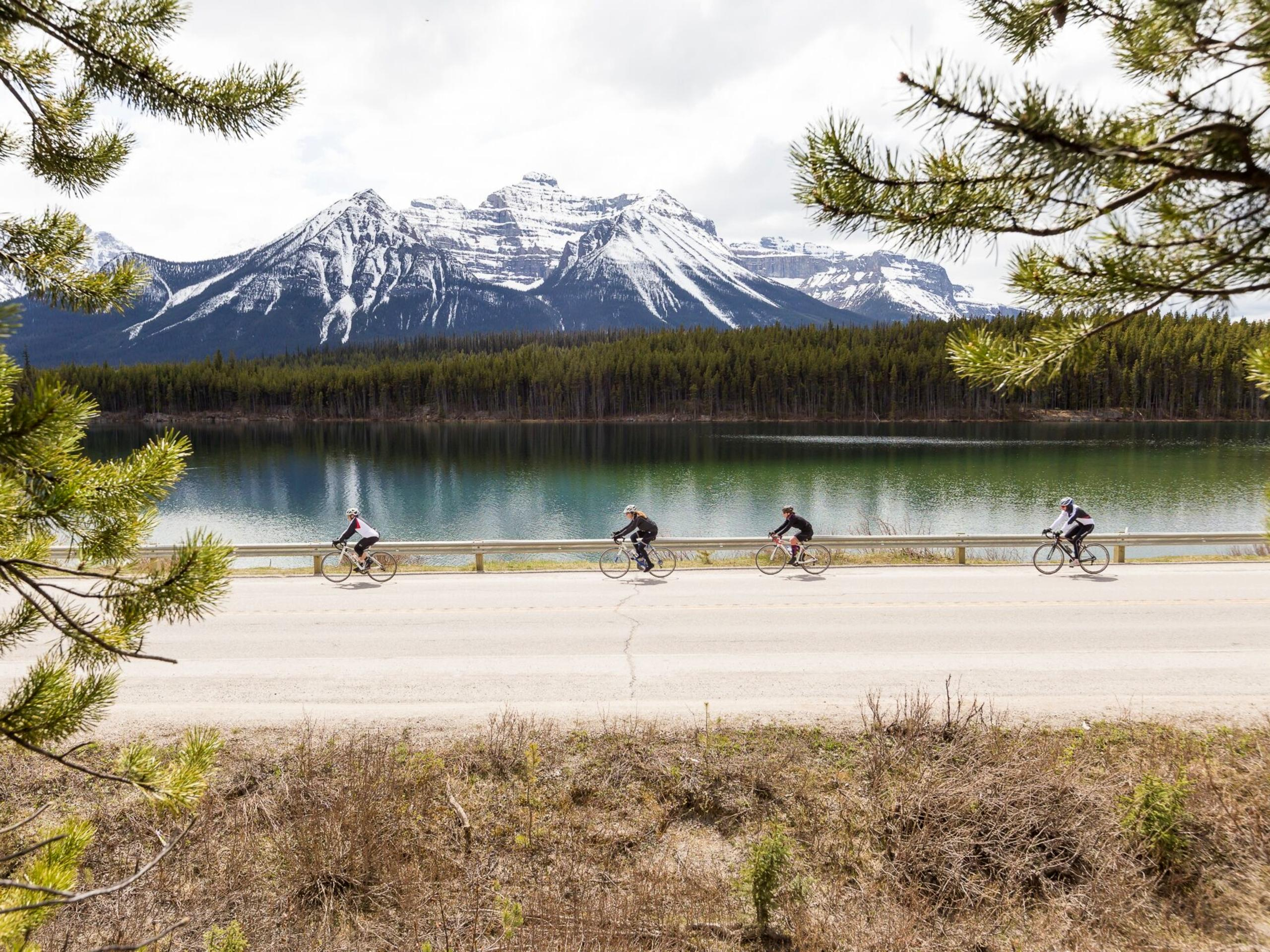 Four bikers riding along the Athabasca River near Jasper