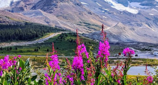 Rockies in Style Hiking Tour